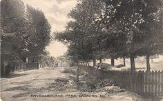 Ravensbourne park
