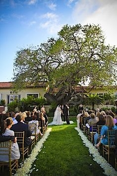 My dream wedding locale: The Inn at Rancho Santa Fe. I love that place and that tree