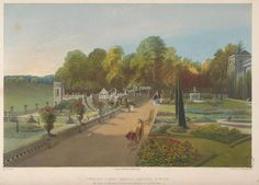 Upper and lower terrace gardens, Bowood      ...