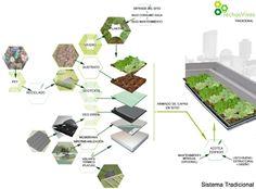 Como construir una azotea verde - 5 Cajas Verdes