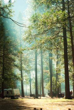 Upper Pines Campground, Yosemite, CA - what beautiful LIFE