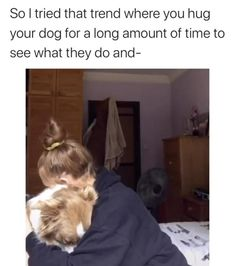 Funny Animal Memes, Funny Animal Videos, Dog Memes, Dog Videos, Videos Funny, Cute Funny Dogs, Cute Funny Animals, Fluffy Cows, Cute Stories