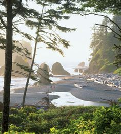 Incredible West Coast Getaways: Olympic Peninsula, Washington