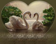 Poemas de Amor - Cuando el corazon ama