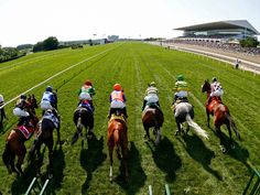 """The best tips for horse racing bet is to go with the winner as the saying goes """"Winners keep on winning and losers keep on loosing"""". Choosing the right horse will surely increase the odds of winning."""