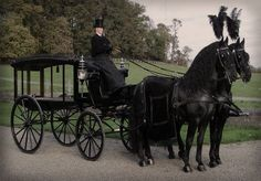 shadowhorses:    Fresian horses drawing a Victorian hearse.