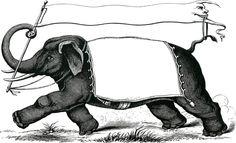 Vintage Elephant Label Images - Fantastic
