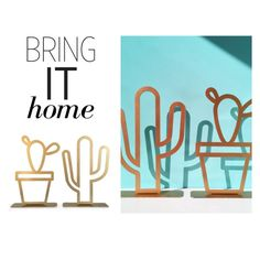 """""""Bring It Home: Cactus and Succulent Decor"""" by polyvore-editorial ❤ liked on Polyvore featuring interior, interiors, interior design, home, home decor, interior decorating and bringithome"""