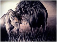 Acrylic painting of Love ;) Lions painted from real picture