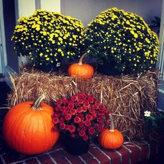 20 Best Hay Bale Decorations Images Hay Bale Decorations Hay