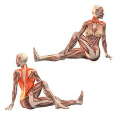 Left twist with left leg bent - Marichyasana left - Yoga Poses | YOGA.com