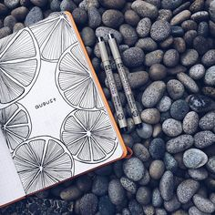 beautiful line drawing, orange slices journal art illustration Journal Layout, Journal Pages, Journal Ideas, Journal Covers, Life Journal, Freetime Activities, Doodle Drawing, Bullet Journel, Bullet Journal Inspiration