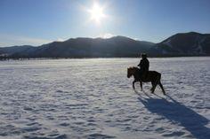 Winter Horse riding tour in Mongolia - http://www.mongolia-travel-and-tours.com/tours/horse-riding-tours/tsagaan-sar-orkhon-winter-horse-riding-tour-mongolia.html