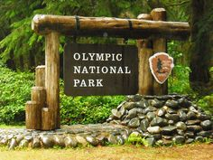 Olympic National Park, Forks, WA