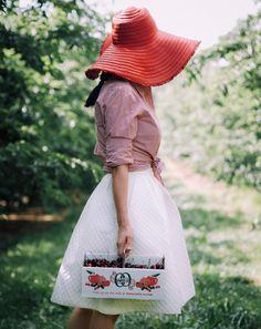 Cherry Picking Season - BITTERSWEET COLOURS