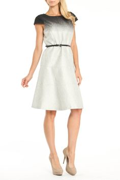 Anne Klein Viola Dress In Black & Pewter - I like the blended look