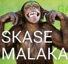 #bossbabe Greek Memes, Funny Greek Quotes, Greek Sayings, Greek Words, Bright Side Of Life, Peanuts Gang, Greek Life, Greeks, Bossbabe