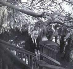 Walt Disney in Adventureland