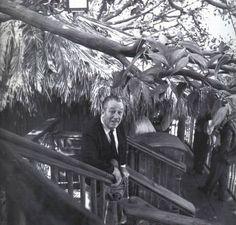 Walt Disney in the Swiss Family Robinson Tree House