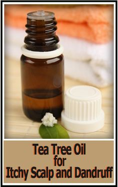 12 Amazing Uses for Tea Tree Oil - Uses for tea tree oil in natural health remedies, homemade cleaning products, and homemade beauty products. Tea Tree Oil Uses, Tea Tree Oil For Acne, Homemade Cleaning Products, Homemade Beauty Products, Eos Products, Cleaning Tips, Natural Health Remedies, Herbal Remedies, Huile Tea Tree