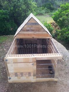 With a few tweaks this would be a great 'grow up' hut for the younger birds. EXCITED!
