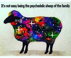 "When people can only describe you by your name only....""Ray is just... Rayshrugs"" #lol #sheeple #blacksheep #astral #pfunk #psychedelic #cosmic #family #smirkingserpent #weird #oddball #dmt #knowledge #kundalini #meditation #science by something_volatile"