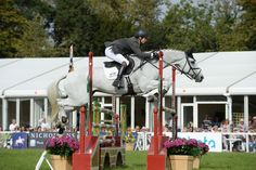 Congratulations to Francis Whittington who picked up his first CCI3* title at Bleheim Horse Trials. Find out how he won and who else was successful in Horse & Hound's online report. #eventing #horsesport