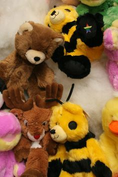 Teams can stuff animals for a local children's charity