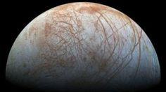 Europa: Our greatest shot at discovering alien life?  BBC Information