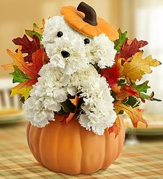 Unleash a season worth of smiles with this adorable a-DOG-able for fall!