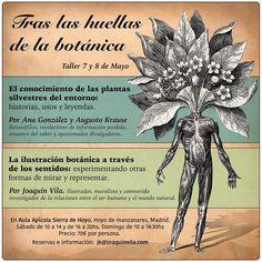 """Taller de etnobotánica e ilustración botánica """"Tras las huellas de la botánica"""", con Ana González, Augusto Krause y Joaquín Vila."""