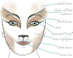 Cats Makeup Center!!!  lots of ideas! :)  http://www.freewebs.com/etcylover/catsmakeupcenter.htm