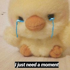 me: penny is lucky if i even say i slightly tolerate her. also me: washes and sits for minutes drying (with a blow dryer) her toy because she looked so sad and confused without it :( Memes Humor, Funny Memes, Reaction Pictures, Funny Pictures, Sapo Meme, Memes Lindos, Cute Love Memes, Quality Memes, Cartoon Memes