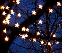The Sight Of The Stars Makes Me Dream.[[P.C.C Auditions.]]