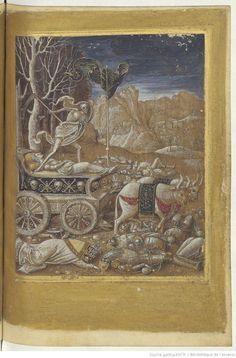 Les « six Triumphes du trés cler et trés prestant poete messire Francisque Petrarque » http://gallica.bnf.fr/ark:/12148/btv1b550089019/f118.item