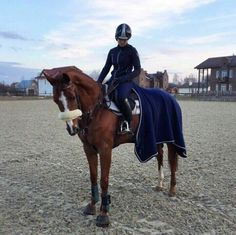 """"""" Hey , im Zahara , im 17 years old and I've been riding since i remember i had a lot of ponies around my life and i have a chestnut Gelding named Sergio V but since thats quite a unique name i say him serch , i know western and English preferably Showjumping and pole bending , come say hi ! """""""