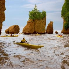 Bay of Fundy, Hopewell Rocks Hopewell Rocks, New Brunswick, Attraction, Things To Do, Canada, Camping, World, Outdoor Decor, Summer