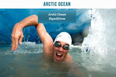 Arctic, Did You Know, Tub, Swimming, Ocean, Outdoor Decor, Southern, Swim, Bathtubs