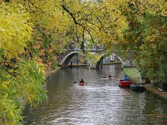 Utrecht's canals are the most beautiful in Europe. Paddling Down the Oudegracht in Utrecht by Alison Netsel A Flamingo in Utrecht