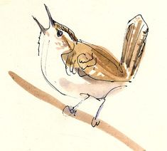 Wren Sketch 4 x 6 watercolor and ink on paper This is a quick gesture sketch of a wren we saw near home singing its bold little hear Sketch Painting, Watercolor Sketch, Watercolor Animals, Watercolor And Ink, Watercolor Paintings, Bird Sketch, Sketch 4, Art Sketches, Sketches Of Birds