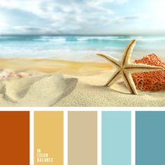 color palette - beached hues