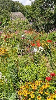 Small Backyard Gardens, Backyard Landscaping, Outdoor Gardens, Natural Landscaping, Country Landscaping, Farmhouse Garden, Garden Cottage, Prairie Garden, Vegetable Garden Design