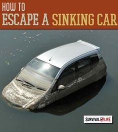 Skills everyone should know how to get out of a sinking car! | http://survivallife.com/2014/10/06/escape-a-sinking-car/