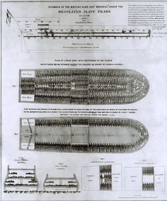 """Stowage of the British Slave Ship """"Brookes"""" under the Regulated Slave Trade"""