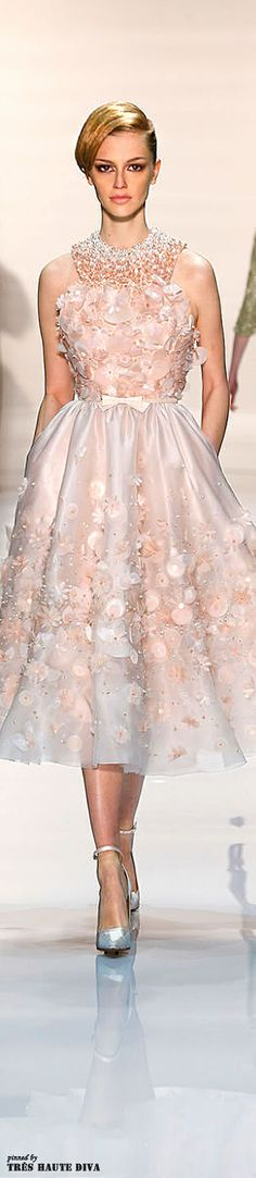 Georgea Hobeika Spring/Summer 2014 Couture