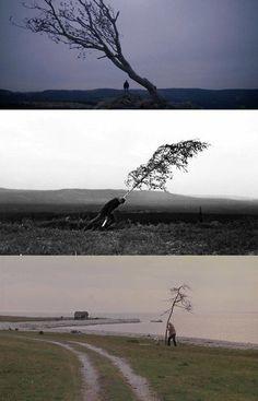 Lars von Trier, Nymphomaniac, 2013; Ingmar Bergman, The Virgin Spring, 1960; Andrei Tarkovsky, The Sacrifice, 1986.