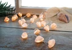 Seashell lights