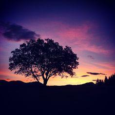 Eccola!! #Alba spettacolare anche questa mattina!! #buongiorno E tu come hai iniziato la giornata?! #trentinodavivere #dolomitiwalkinghotel