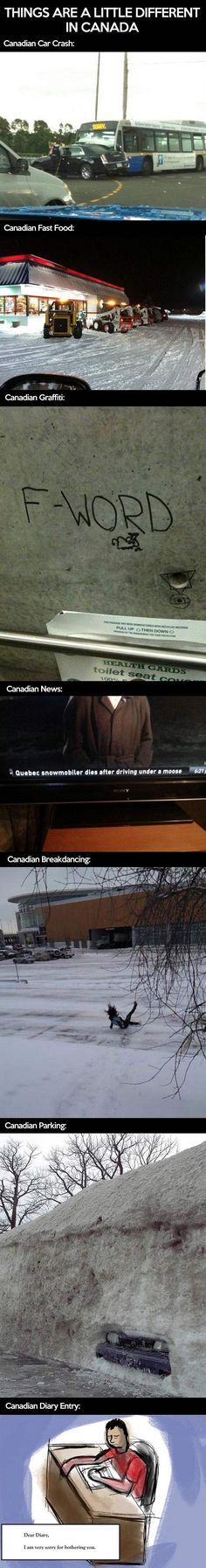 Oh just Canada.. // funny pictures - funny photos - funny images - funny pics - funny quotes - #lol #humor #funnypictures