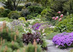 Onko pihasi aurinkoinen, varjoisa tai tuulinen? Kaipaatko väriä vai romanttista tunnelmaa? Tässä 21 x ilmainen pihasuunnitelma – pian puutarhasi tai kukkapenkkisi on entistä kauniimpi.